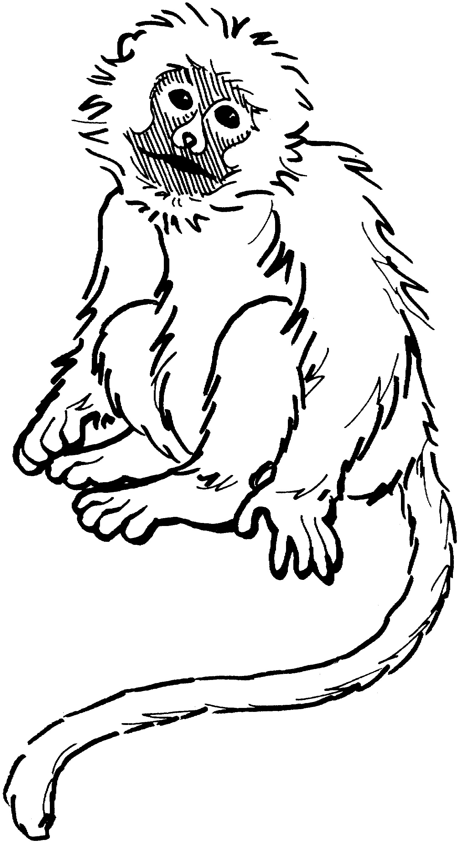 printable monkey coloring pages | coloring me - Coloring Pages Monkeys Trees