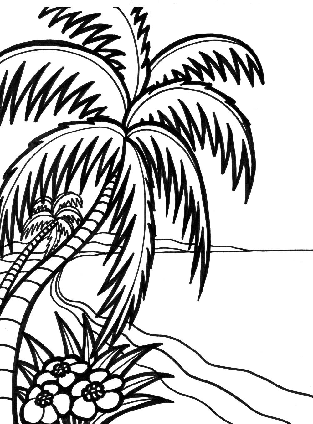 ocean plants coloring pages adults | coral colors coral reef ... | 1354x1000