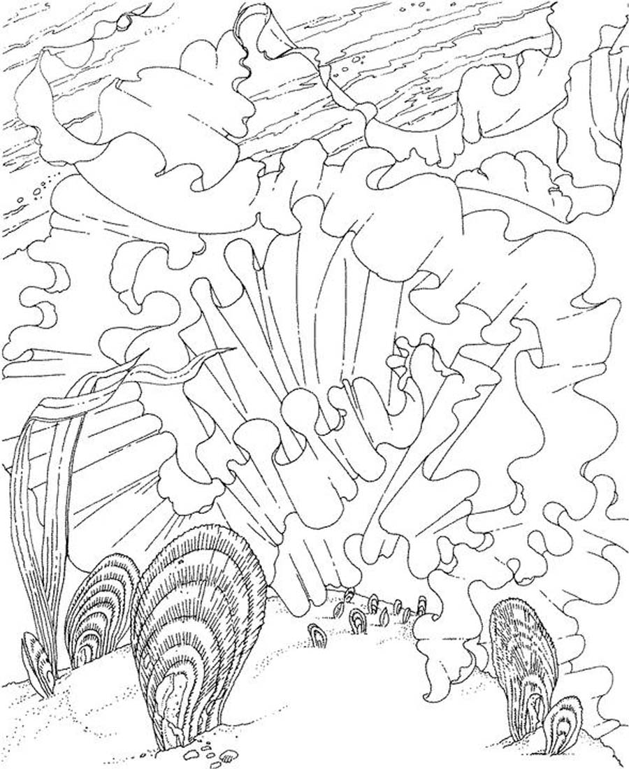 ocean coloring pages colored - photo #31