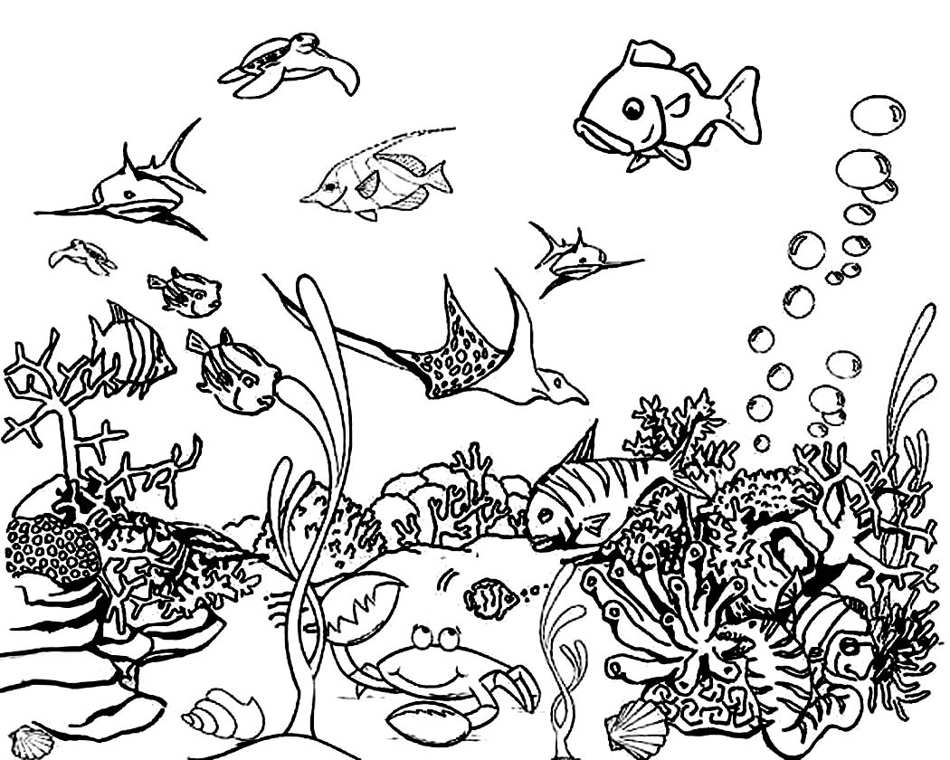 ocean animals plants coloring pages - photo#11