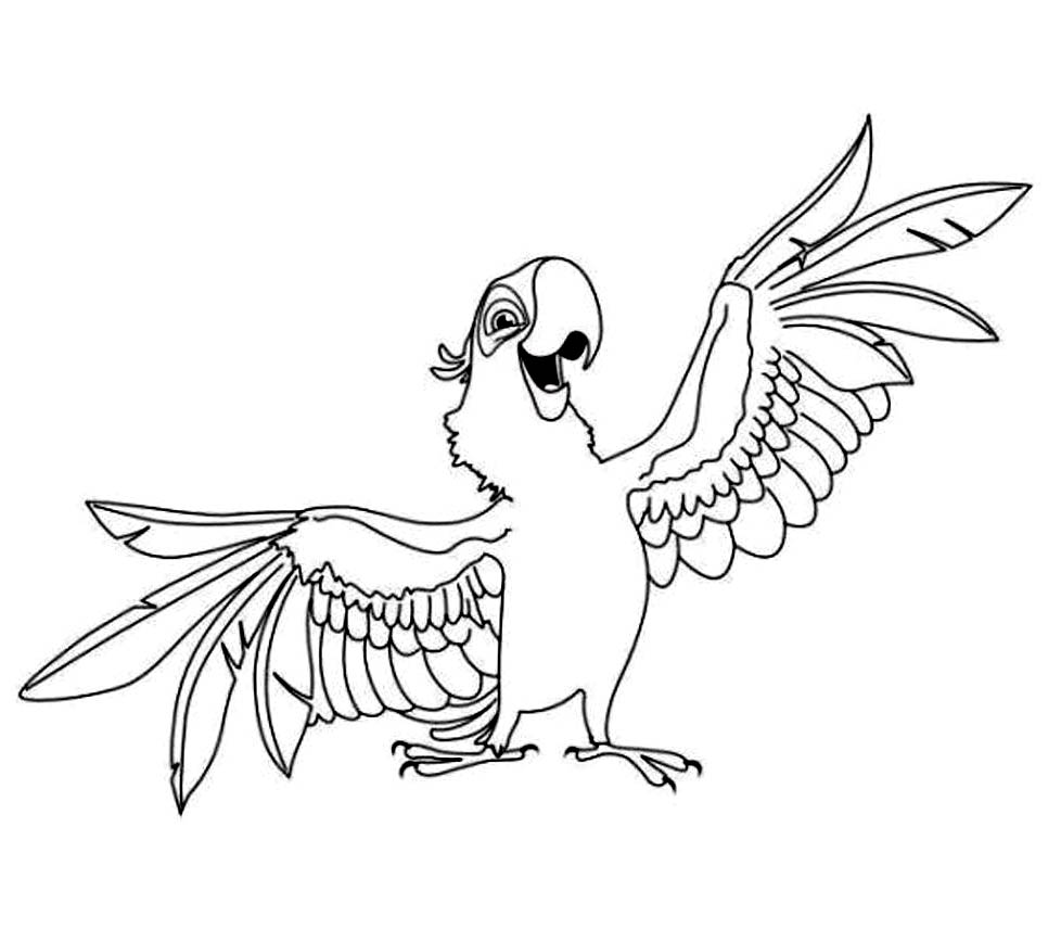 parrot coloring pages for kids - Parrot Pictures To Color