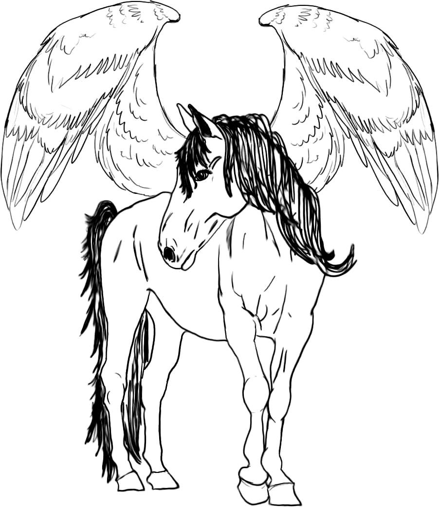 Baby pegasus coloring pages coloring pages for Coloring pages of pegasus