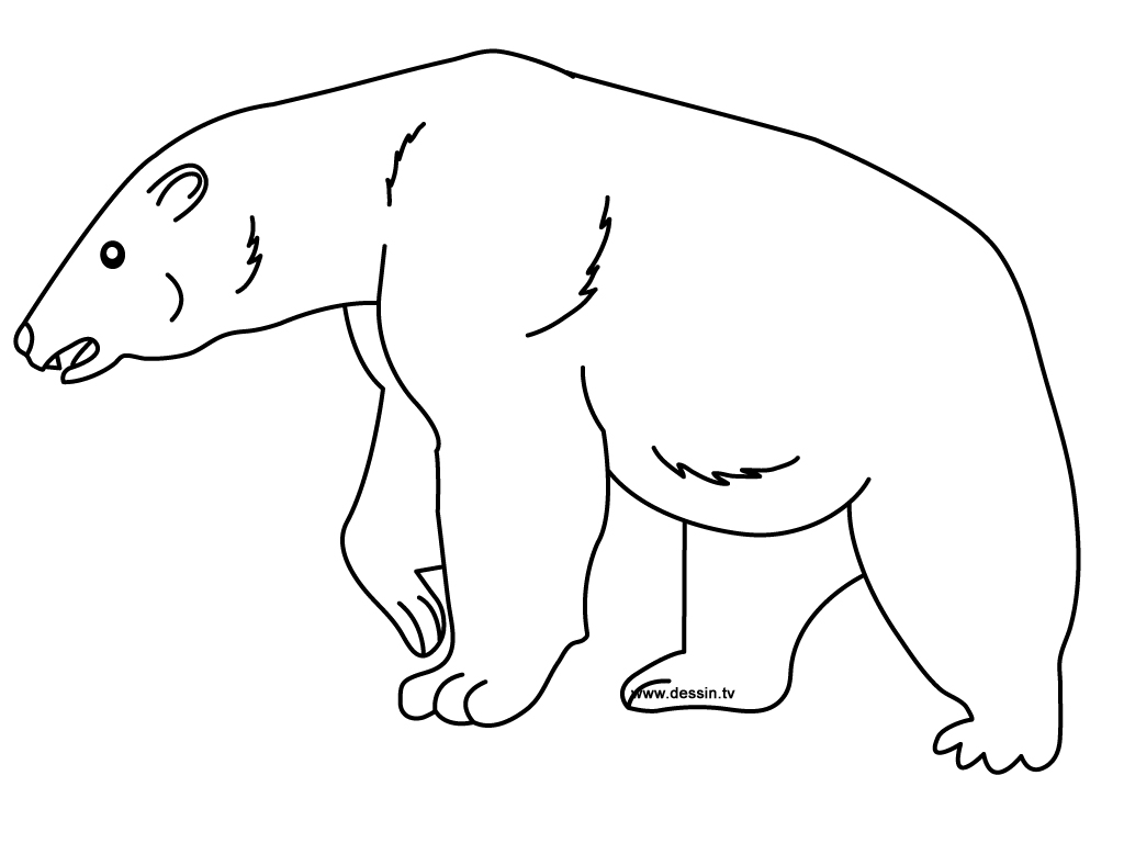 Printable Polar Bear Coloring Pages Coloring Me Polar Coloring Pages Printable