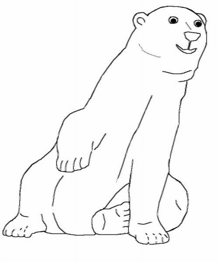 Arctic animals coloring pages print outs coloring pages for Polar bear coloring pages