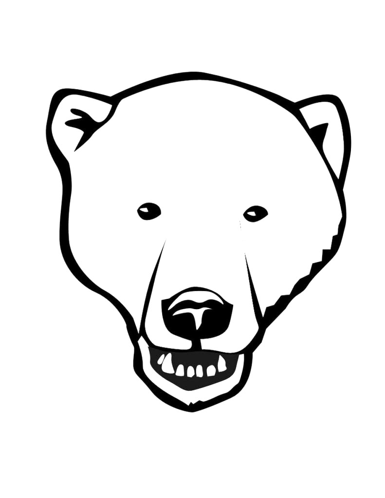 Bear face coloring page educational coloring pages for Polar bear face template
