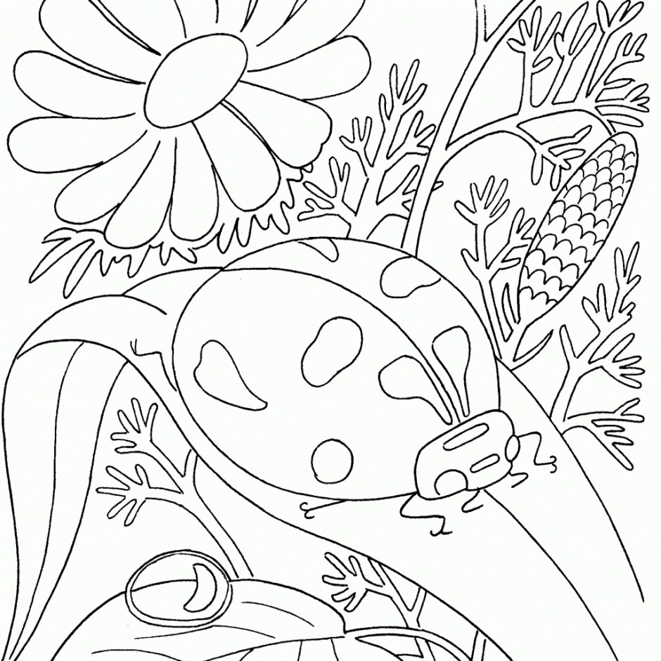 Bug Printable Coloring Pages