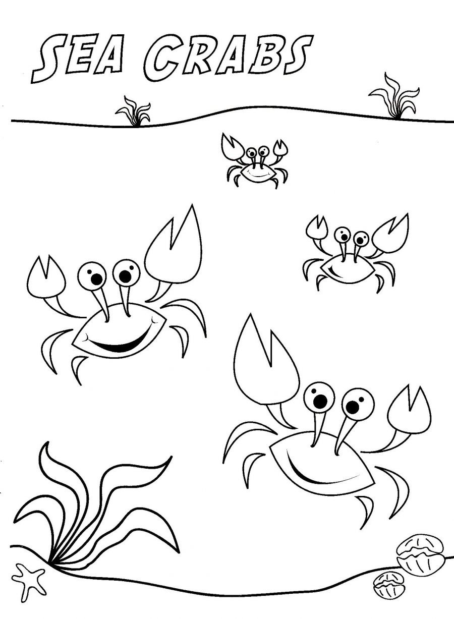 printable crab coloring pages