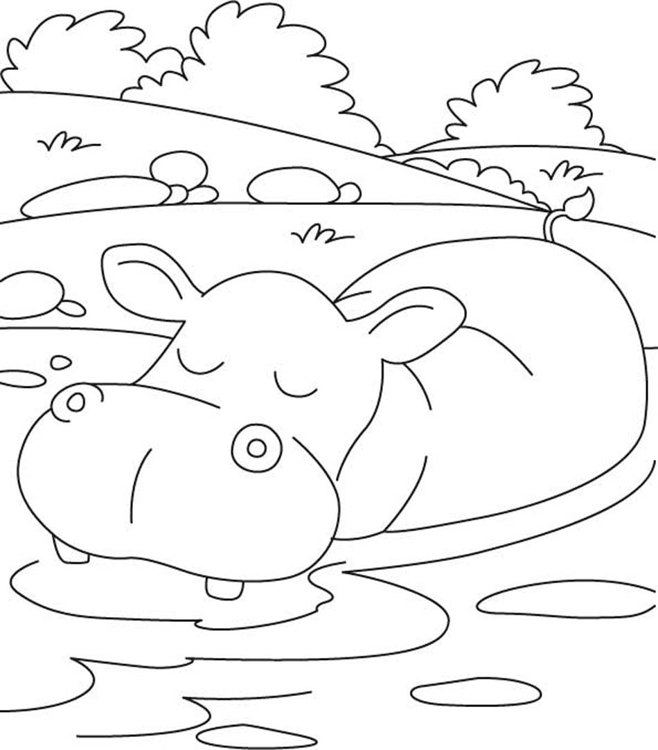 hippopotamus coloring pages to print - photo#30