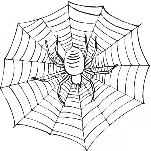 Printable Spider Web Coloring Pages | Coloring Me