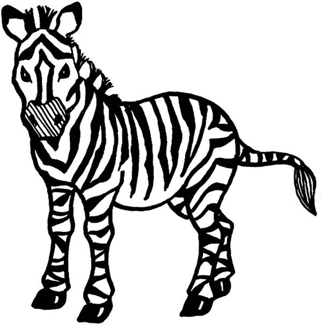 Free zebra coloring pages to print - Printable Zebra Coloring Pages For Kids