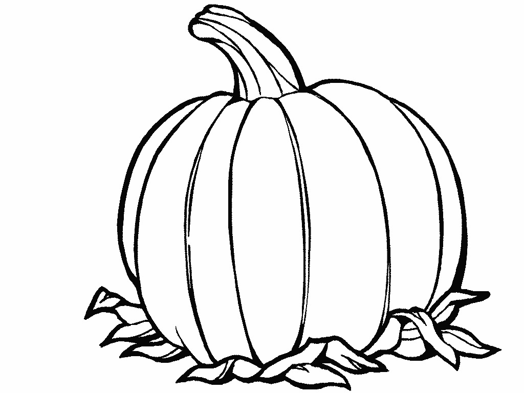 Printable Pumpkin Coloring Pages Coloring Me Coloring Pages Of Pumpkins
