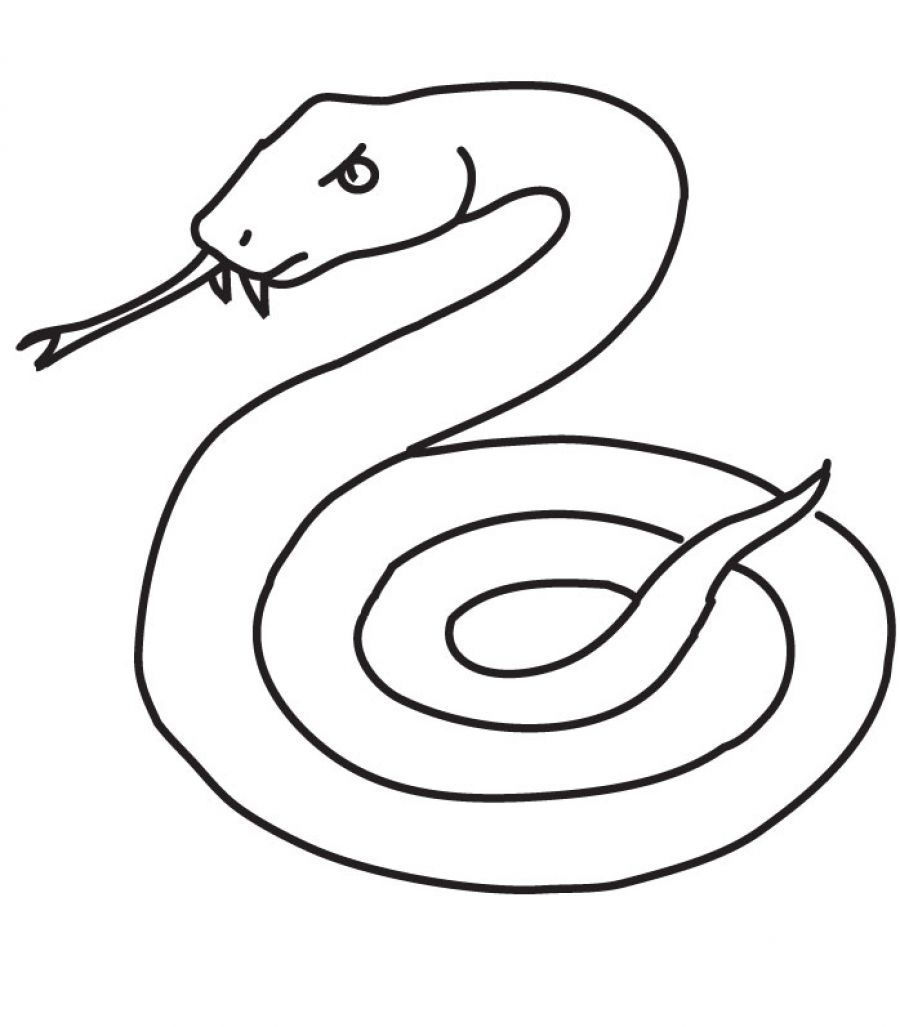 coloring book pages of snakes - photo#14