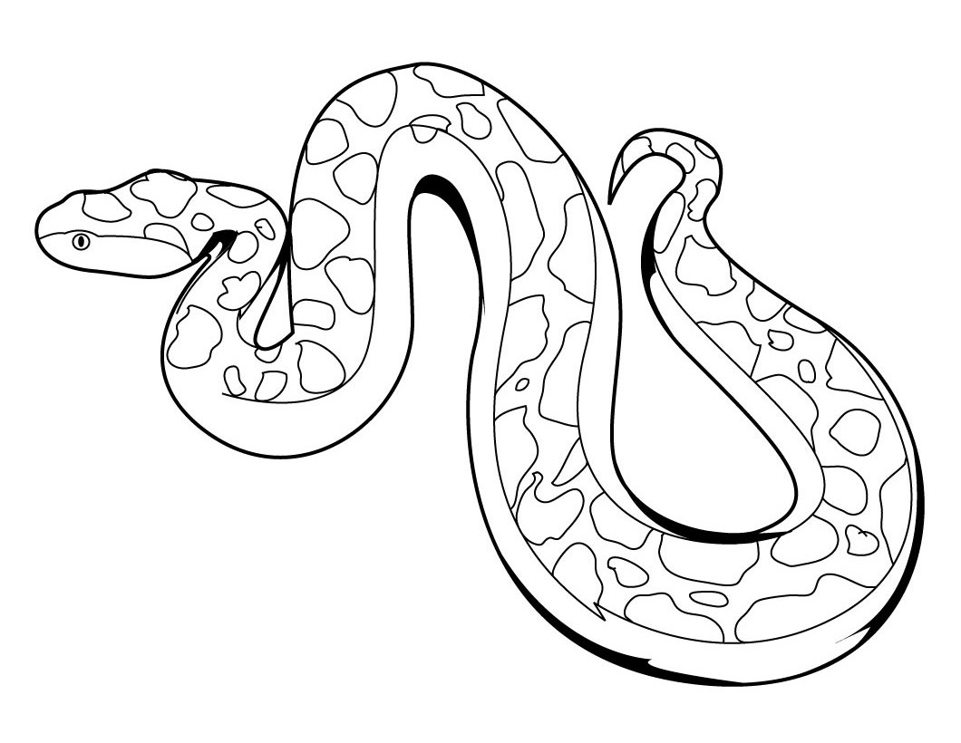 image relating to Snake Coloring Pages Printable titled Printable Snake Coloring Web pages