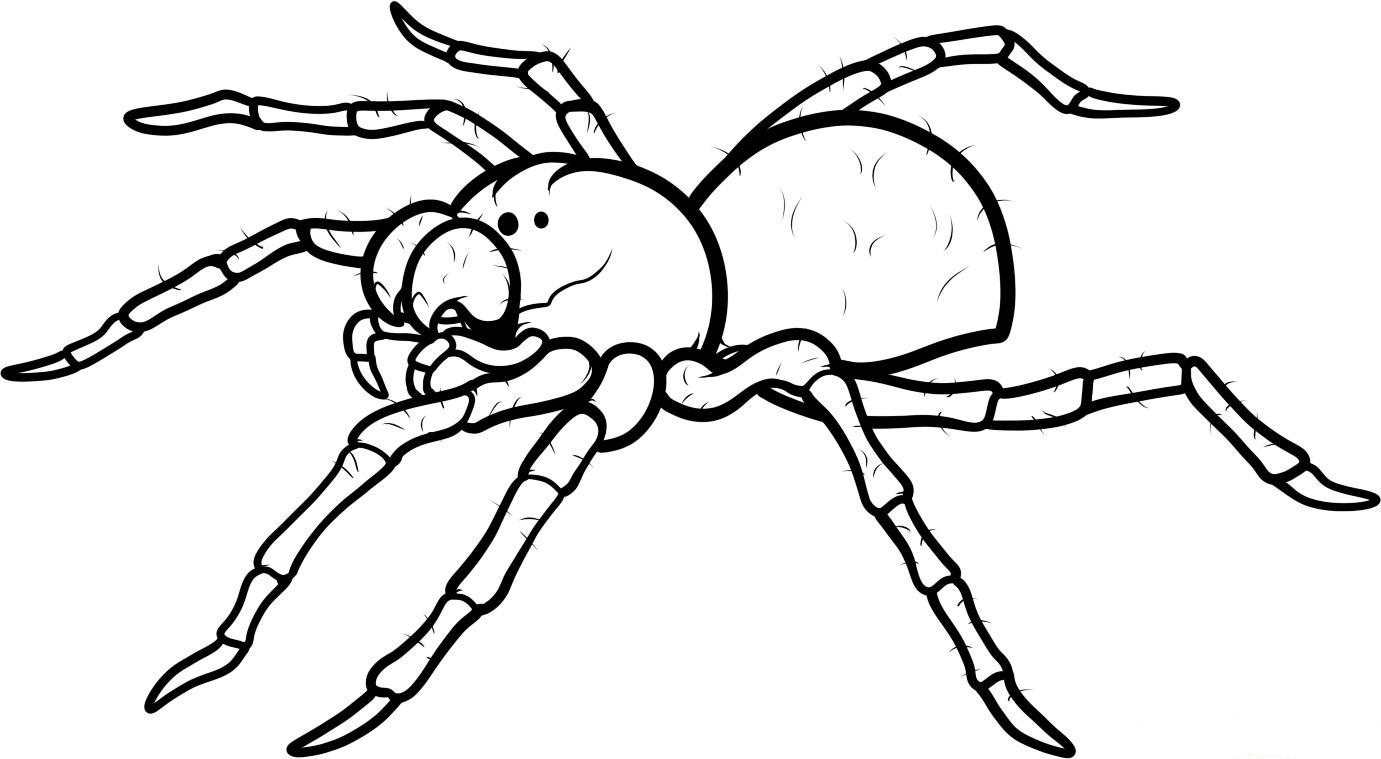 printable halloween spider coloring pages - photo#19