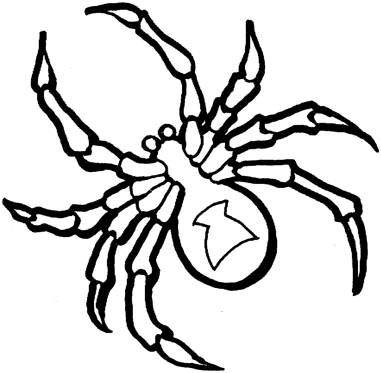 coloring pages tarantula - photo#15