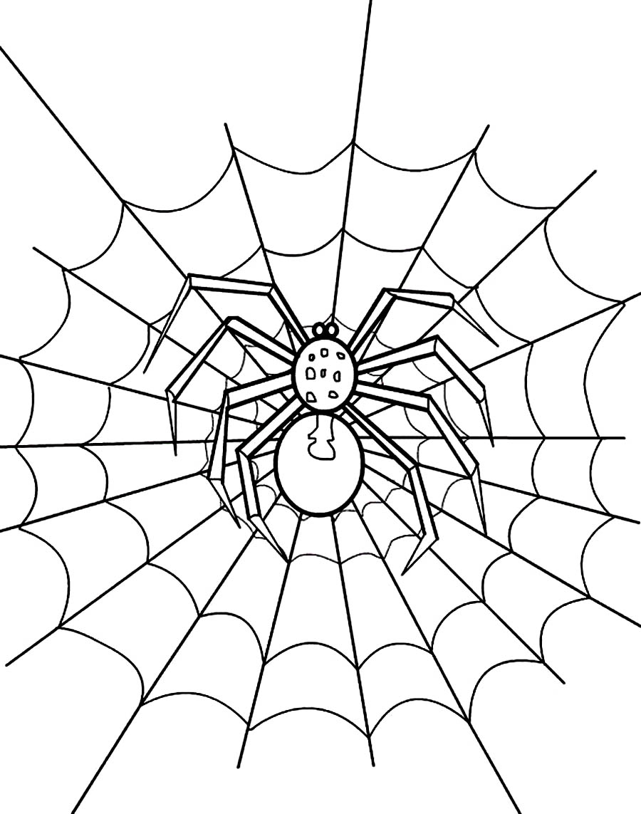 free spider web coloring pages - photo#14