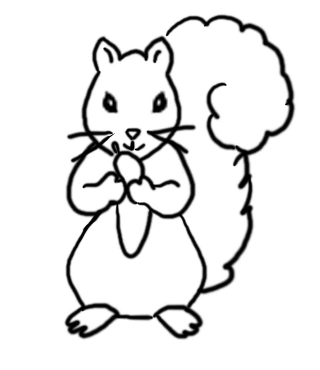 Download Free png Red Squirrel Eating Nut coloring page | Free ... | 1200x1039