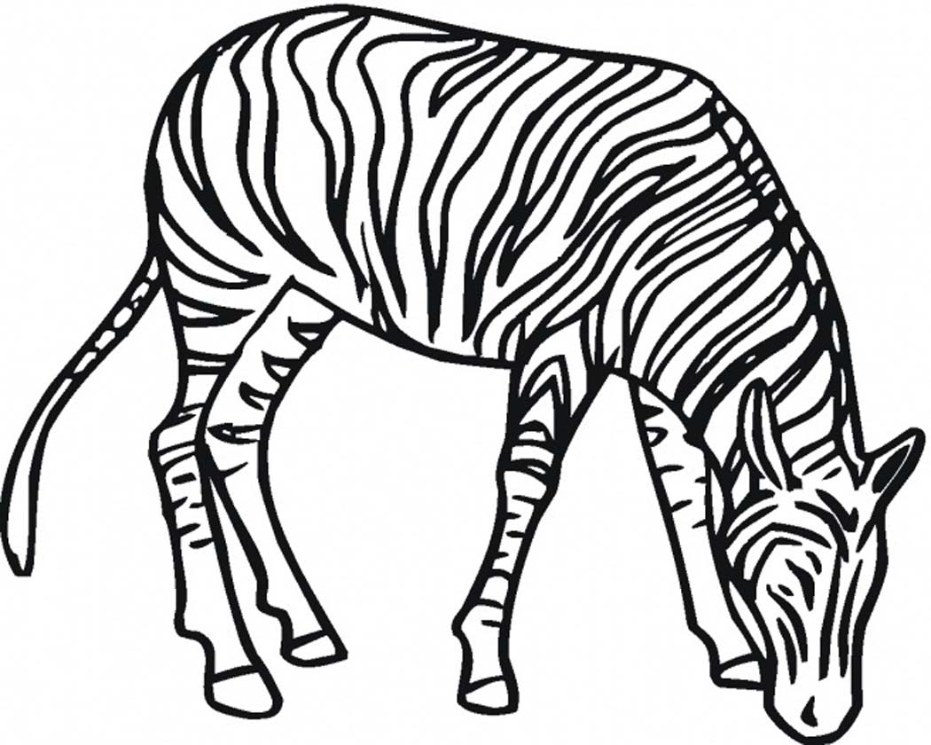 Printable Zebra Coloring Pages | Coloring Me