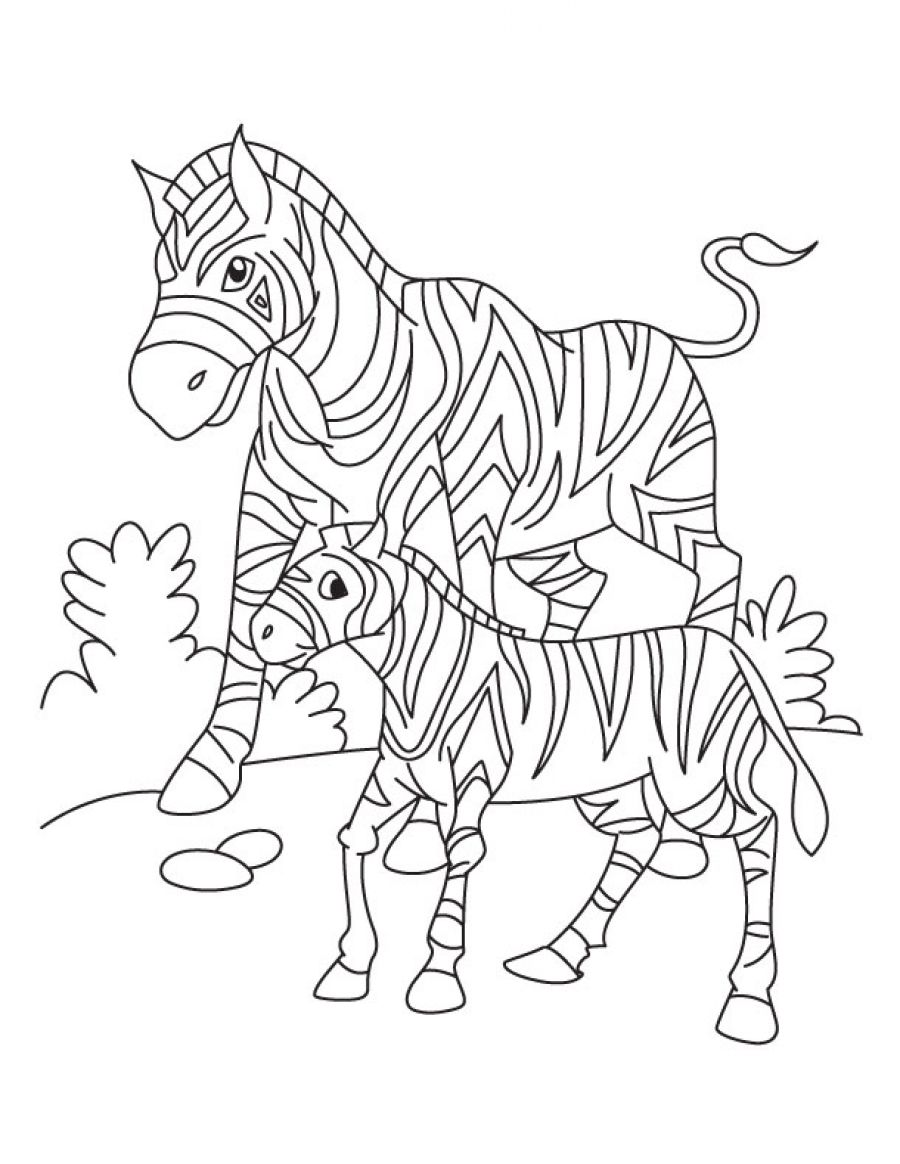 Coloring pages zebra - Zebra Coloring Sheet