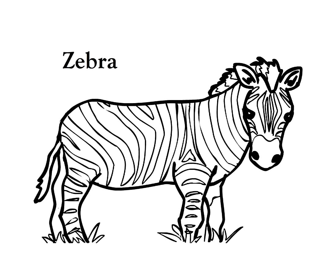 zebra coloring sheets to print - Zebra Coloring Pages