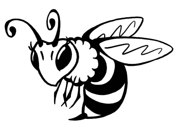 Bee coloring picture the image kid has it for Bees coloring pages