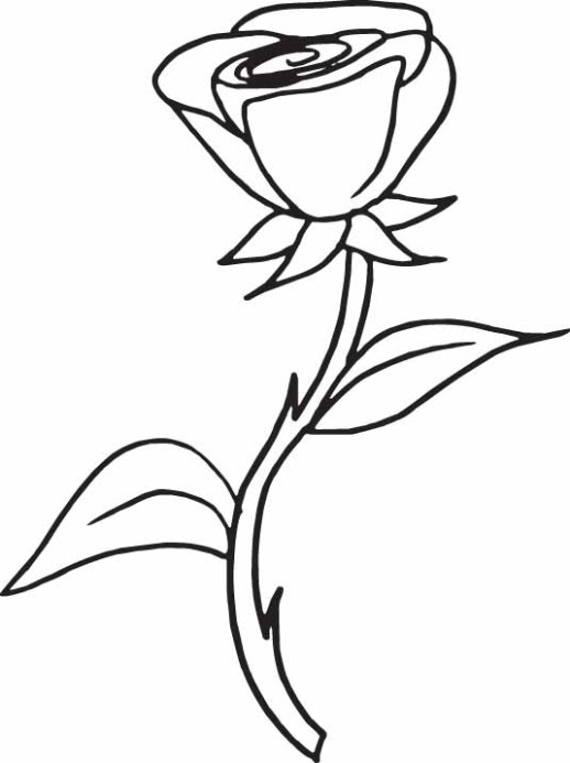 Coloring Page Rose | Coloring Me