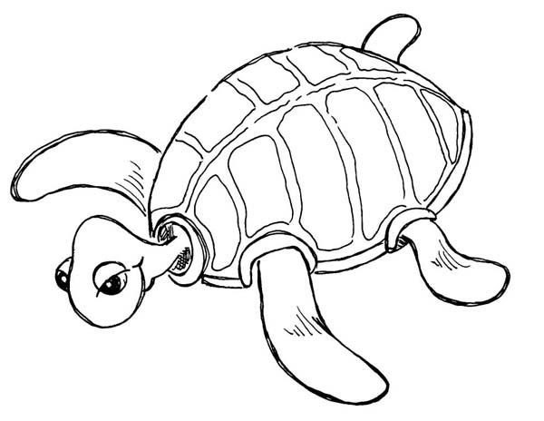 Sea turtle cute pages coloring pages for Cute coloring pages of turtles