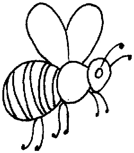 honey bee coloring pages