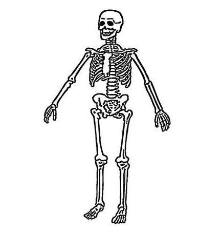 Dancing bones coloring page coloring pages for Skeleton coloring pages