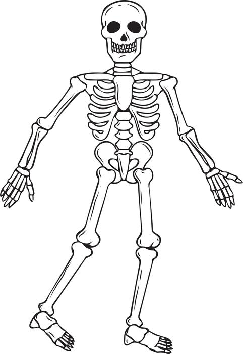 Printable Skeleton Coloring Pages Me