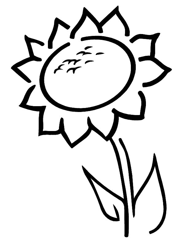 Printable Sunflower Coloring Pages | Coloring Me