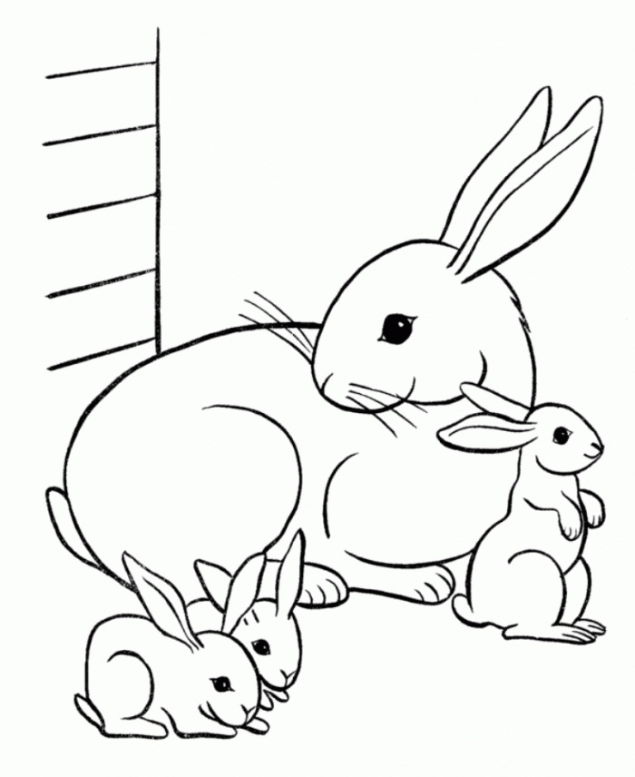 Printable Rabbit Coloring Pages | Coloring Me