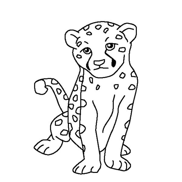cheeta coloring book pages - photo#33