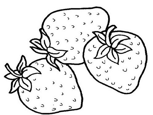 Printable Fruit Coloring Pages | Coloring Me