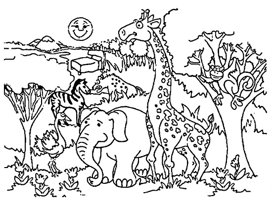 Coloring Page Zoo Printable Zoo Coloring Pages ColoringMecom