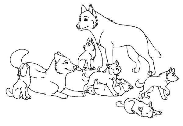 Wolf coloring pictures free printables coloring page for Free printable wolf coloring pages
