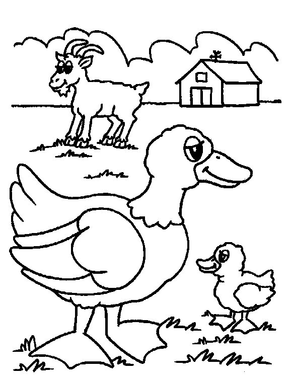 farm animal coloring pages for preschoolers - Preschool Animal Coloring Pages