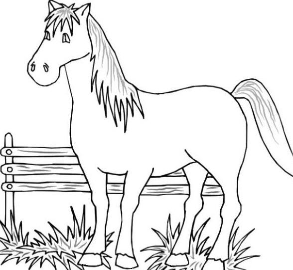 printable coloring pages farm animal - photo#23
