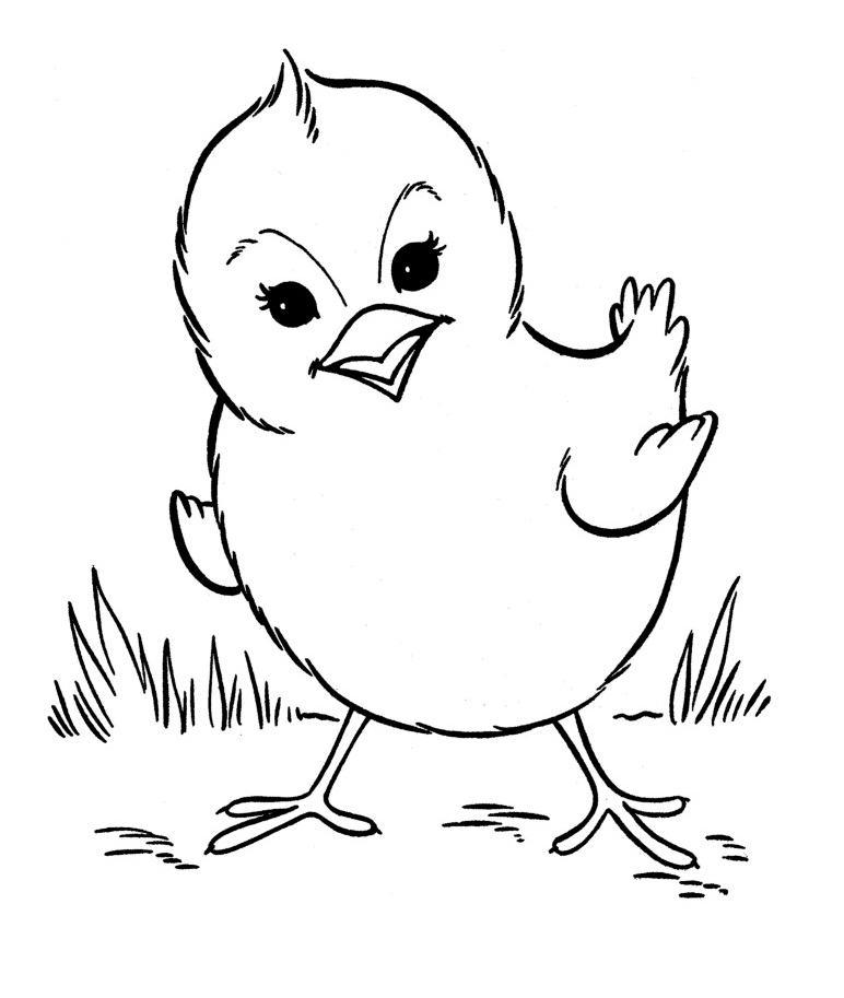 printable coloring pages farm animal - photo#10