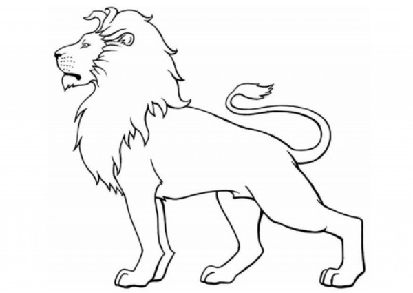 Cartoon Male Lion Coloring Page Gorgeous Click The Standing
