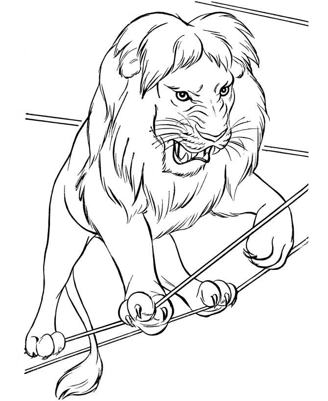 printable lion coloring pages coloring me - Print Pages To Color