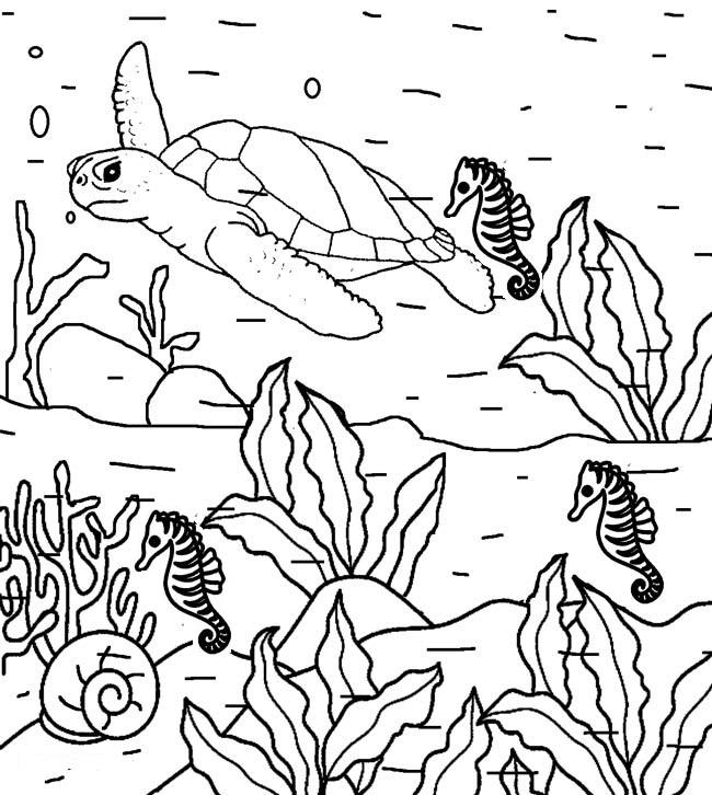 nature coloring sheets