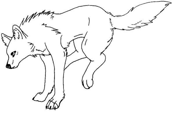 Printable Coloring Pages Of Wolves  Coloring Pages For Kids and