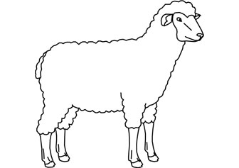 Sheep Cartoon Coloring Pages Coloring Coloring Pages