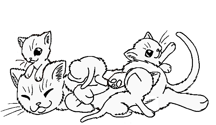 Warrior Cat Kit Coloring Pages Me