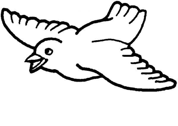 bird coloring pages to print besides  moreover  as well  as well M8cA98MTa moreover care bears coloring pages pdf furthermore hummingbird with sunflowers coloring page likewise  besides  moreover  moreover arkansas state bird coloring page. on printable birdhouse coloring pages for adults