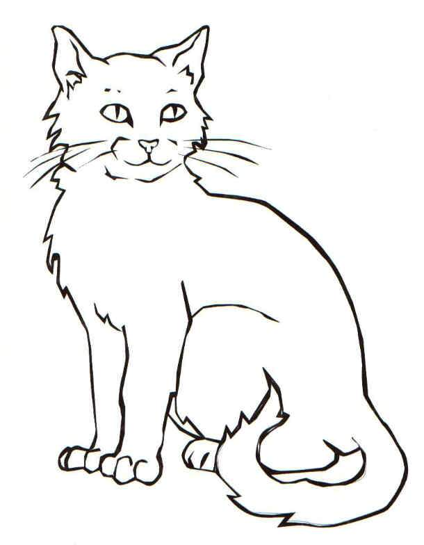 cat coloring sheets