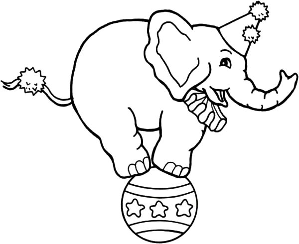 elephant ear coloring page image
