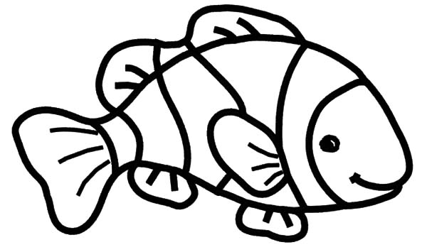 Puffer fish coloring pages