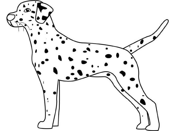 Printable Dog Coloring Pages Me